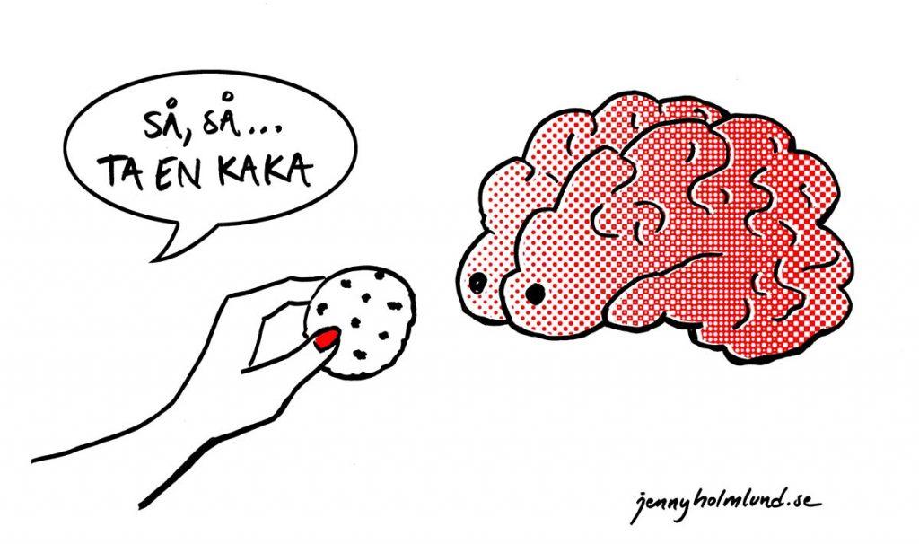 matad-hjärna